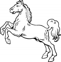 horse clipart