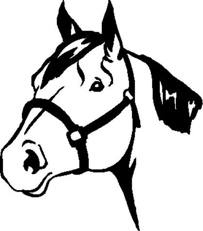 Horse Head Decal 50A