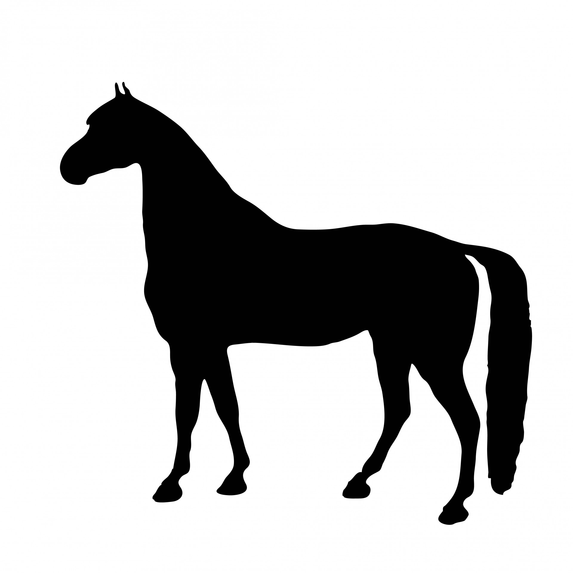 Horse Silhouette Clipart Free Stock Photo Hd Public Domain Pictures