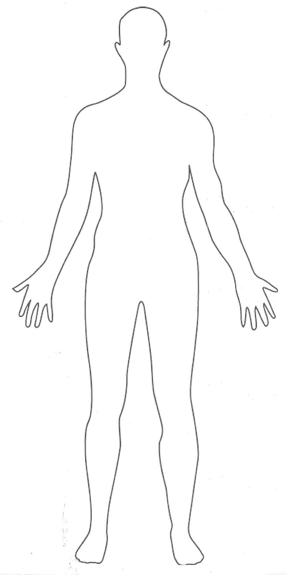 Human Body-Human Body-17