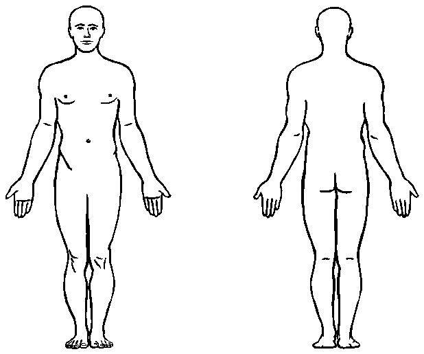 ... Human Body Cartoon | Free - Human Body Clipart