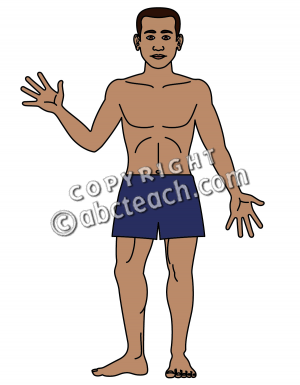 Human Body Clip Art