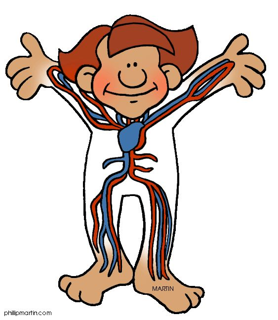 ... Human body clipart free . - Human Body Clipart