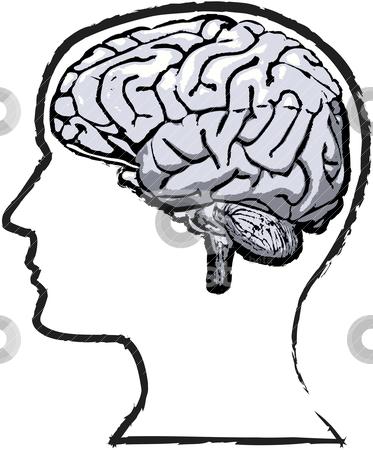 ... Human Brain Clipart Free Clip Art Im-... human brain clipart free clip art images ...-5