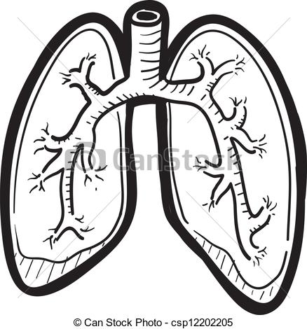 ... Human lung sketch - Doodle style human lung illustration in.