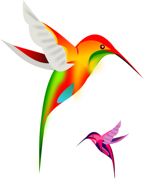 Hummingbird clipart free clipart images 3