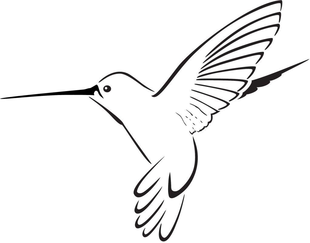 Hummingbird Clipart | Clipart - Hummingbird Clipart