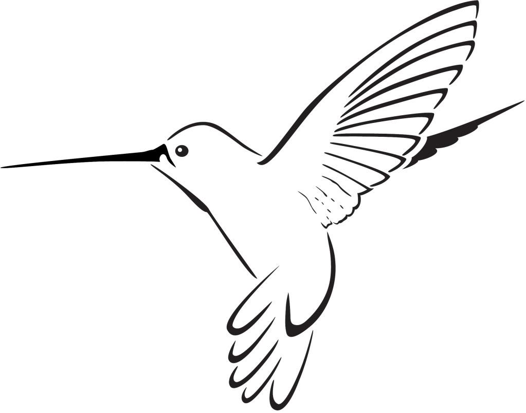 Hummingbird Clipart-hummingbird clipart-16