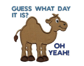 Hump Day Camel Machine Embroidery Digita-Hump Day Camel Machine Embroidery Digital Applique Design-12