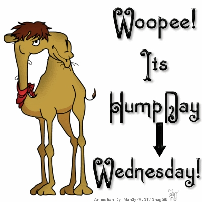 Hump Day Clip Art