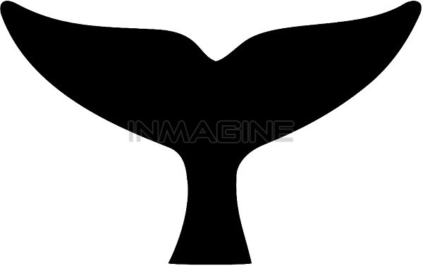 Humpback Whale Tail Clipart-Humpback Whale Tail Clipart-0