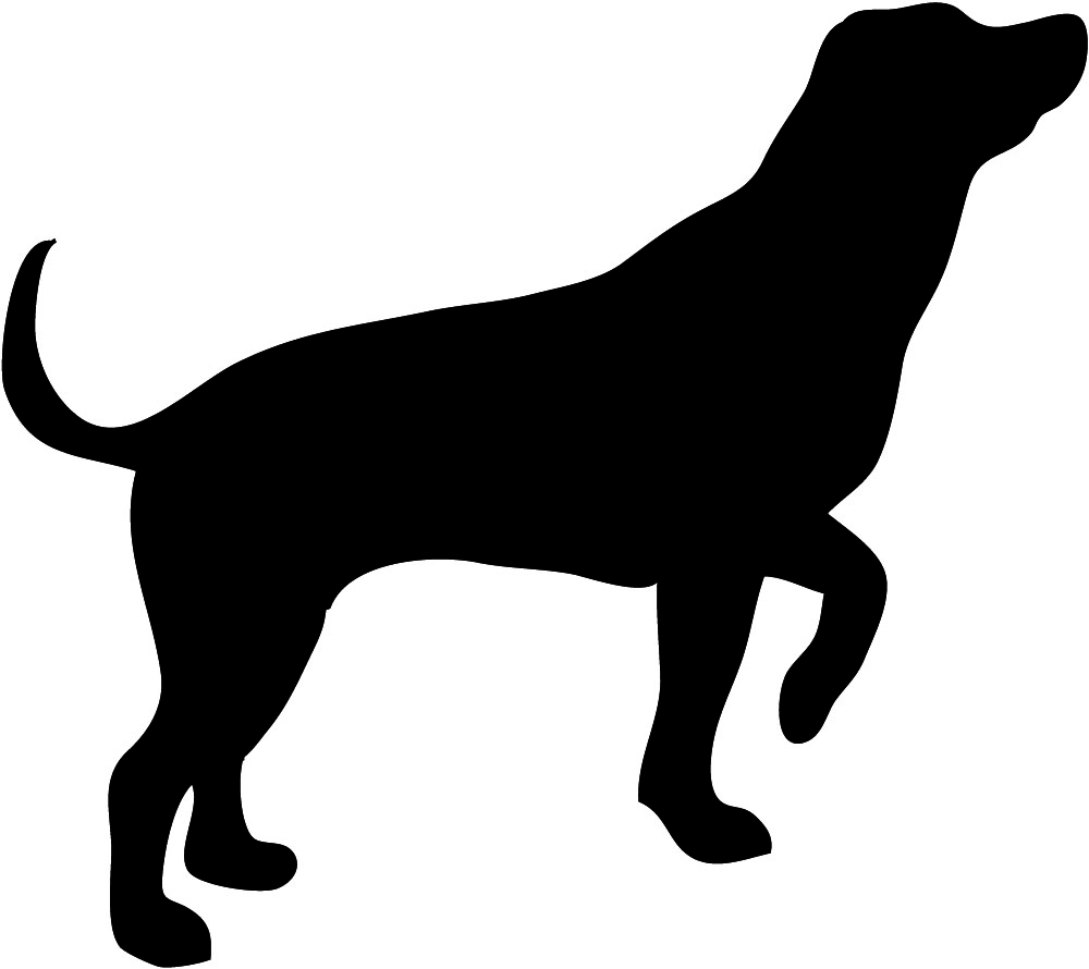 hunting dog silhouette .