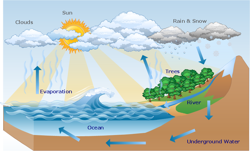 Hydrologic cycle diagram