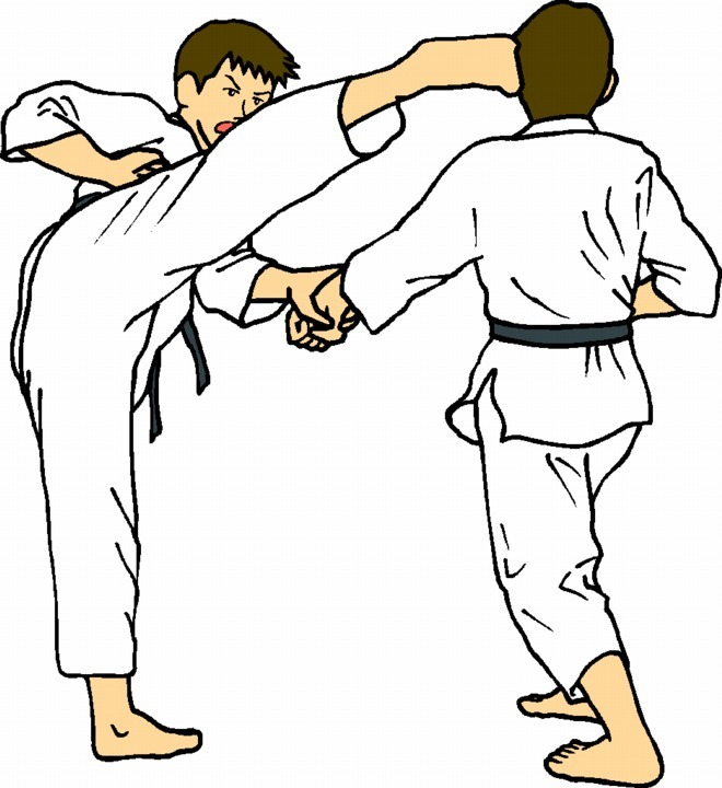 I have assembled 120 pieces o - Martial Arts Clipart