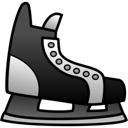 Ice Skating Shoe2