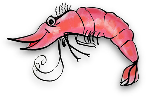 If you use our shrimp clip art and gifs -If you use our shrimp clip art and gifs please give us credit. u0026quot;Free Gifs u0026amp; Animationsu0026quot; http://www.fg-a clipartall.com. Thank You.-17