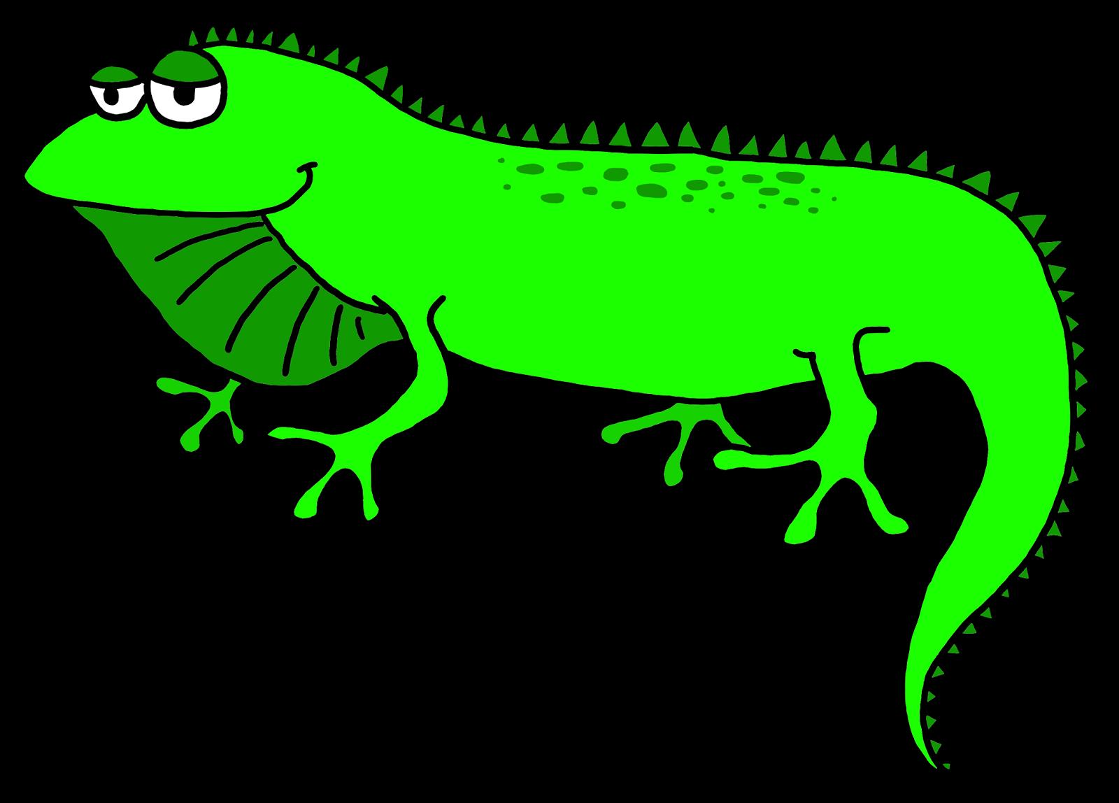 Iguana Clip Art-Iguana Clip Art-3