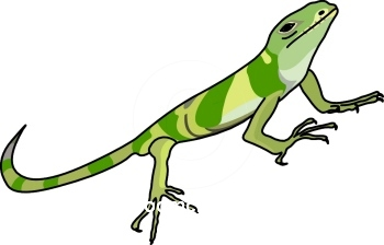 Iguana Clip Art-Iguana Clip Art-18