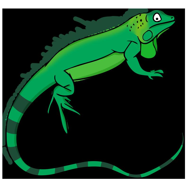 Iguana Clip Art-Iguana Clip Art-0