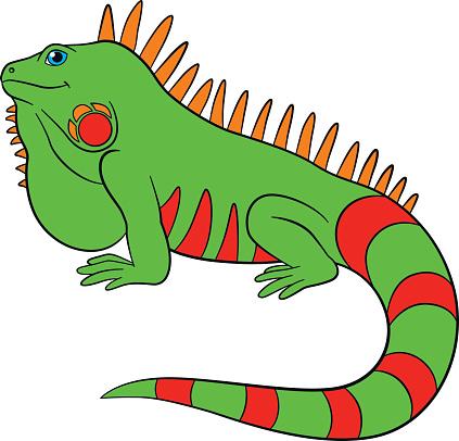 Iguana Clipart - ClipArt Best
