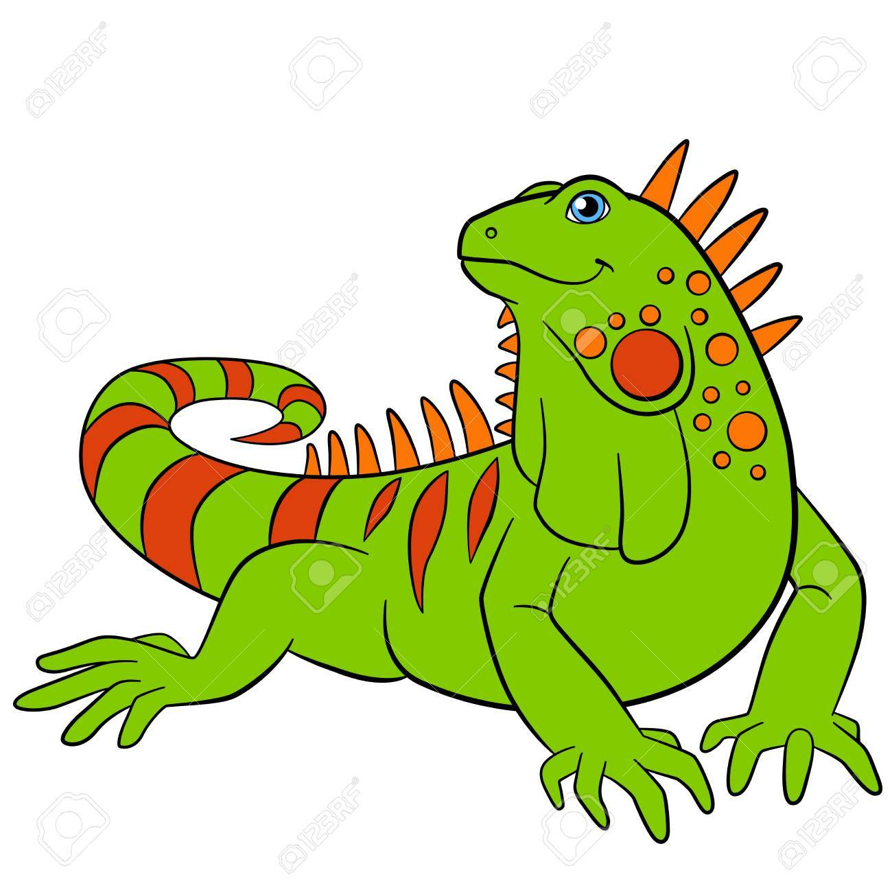 Cute Green Iguana Sits And Smiles. Stock-Cute green iguana sits and smiles. Stock Vector - 62894630-7