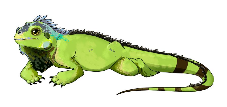 Green Iguana Cliparts-Green iguana cliparts-11