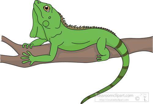 Reptile-lizard-green-iguana-clipart.jpg-reptile-lizard-green-iguana-clipart.jpg-21