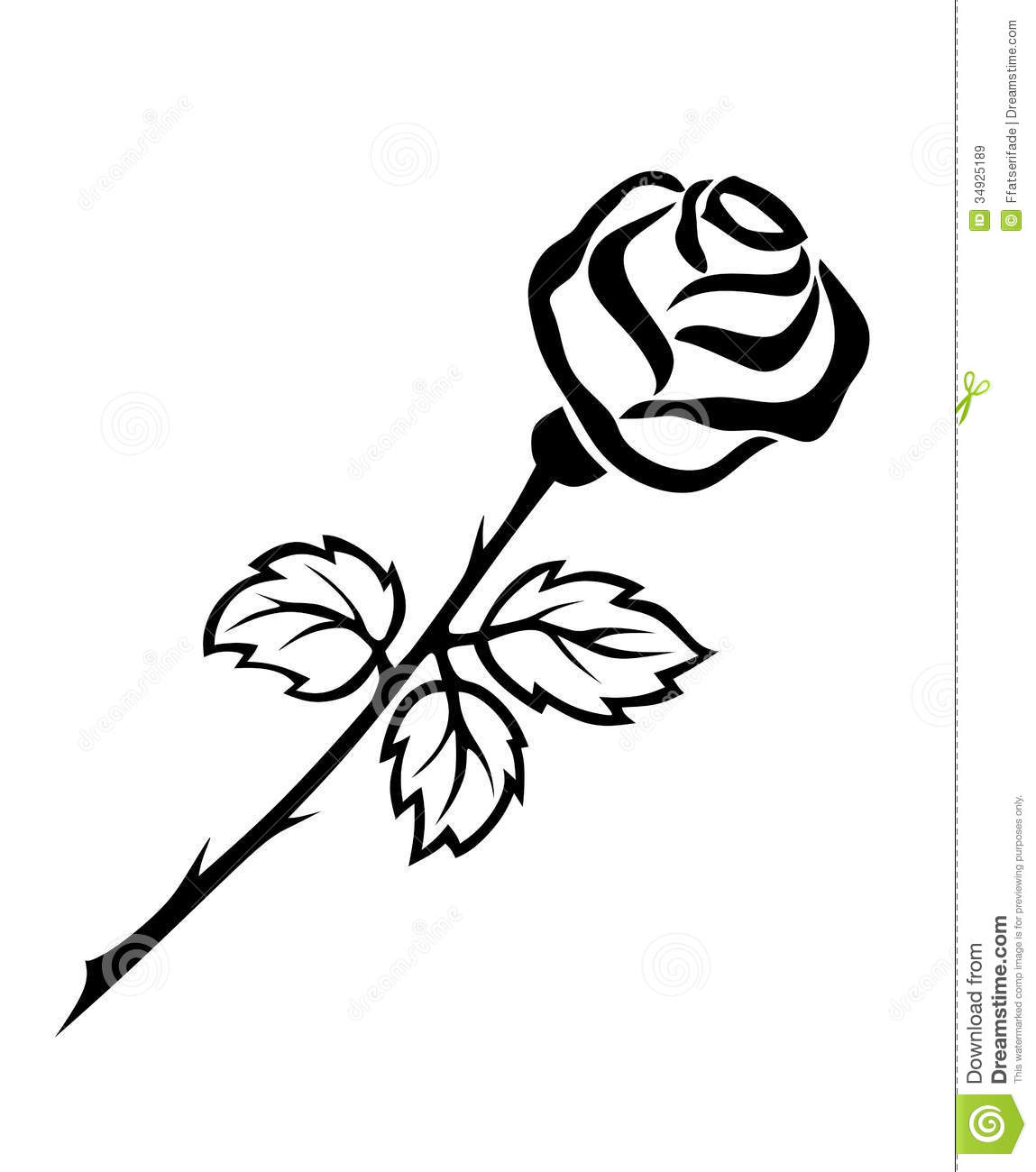Illustration Of Beautiful Black And White Rose With Thorns