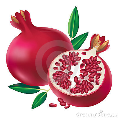 Illustration Of Pomegranate Fruit And Sliced Half Of Fruit Isolated On