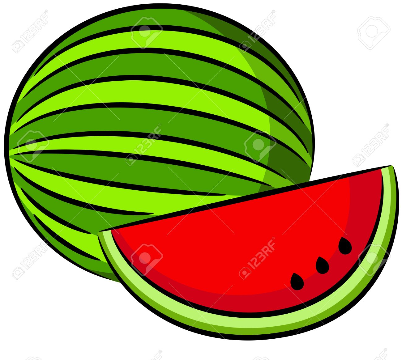 illustration of water melon .