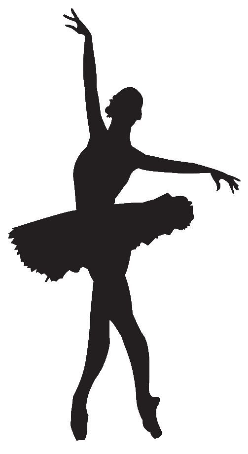Image detail for -... buy ballet tutus click here to find the best