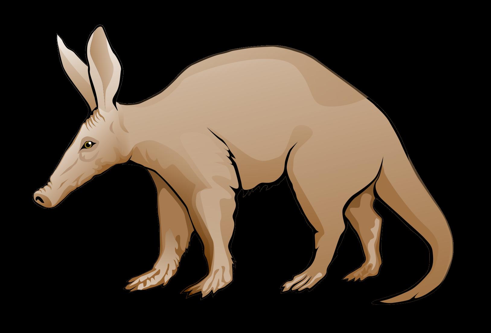 Image Of Aardvark Clipart .-Image of Aardvark Clipart .-19