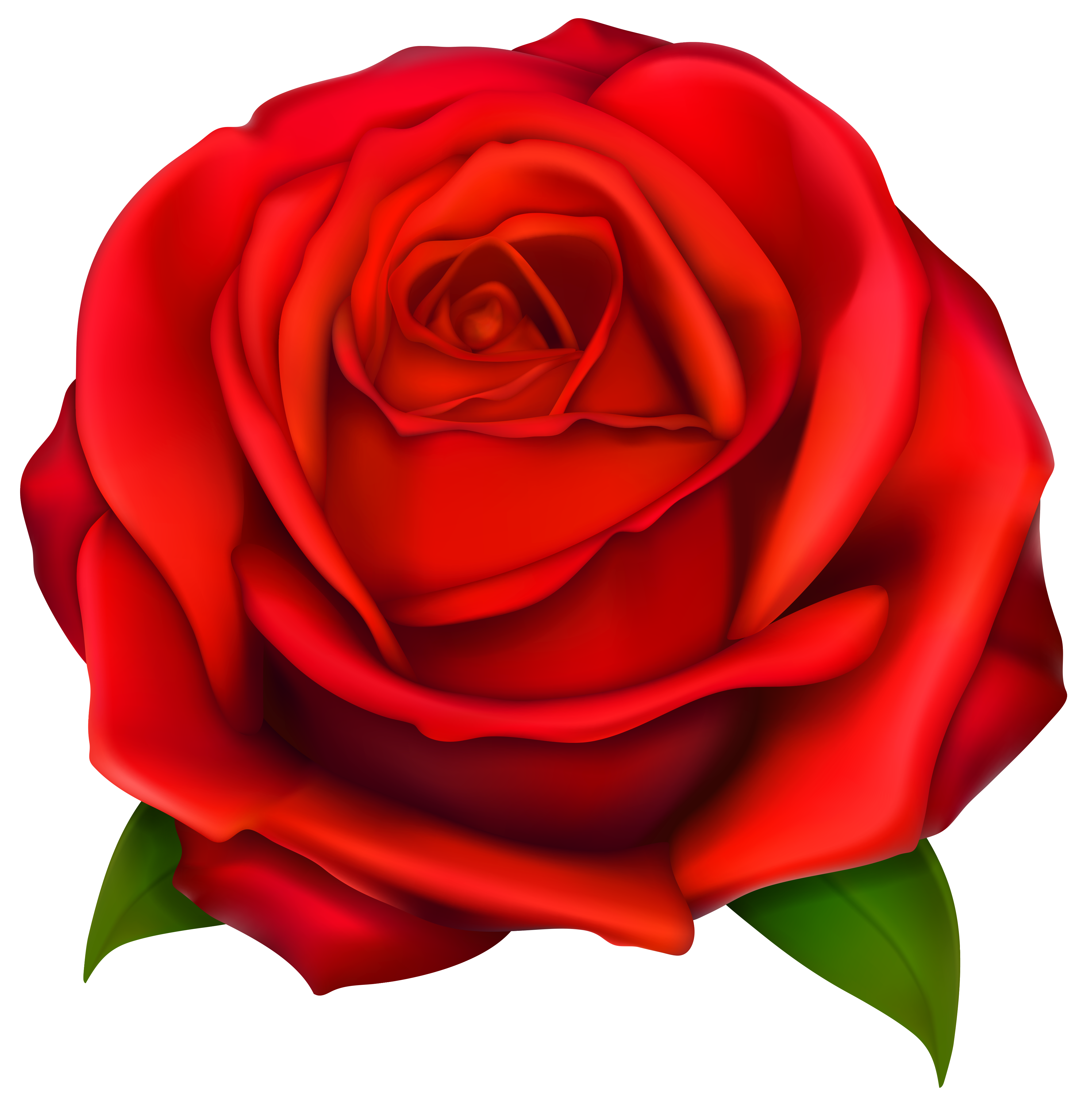Image of clip art red rose 2 .