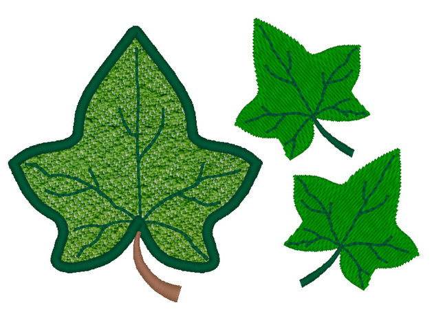 Images Of An Ivy Leaf Free Cliparts That-Images Of An Ivy Leaf Free Cliparts That You Can Download To You-2