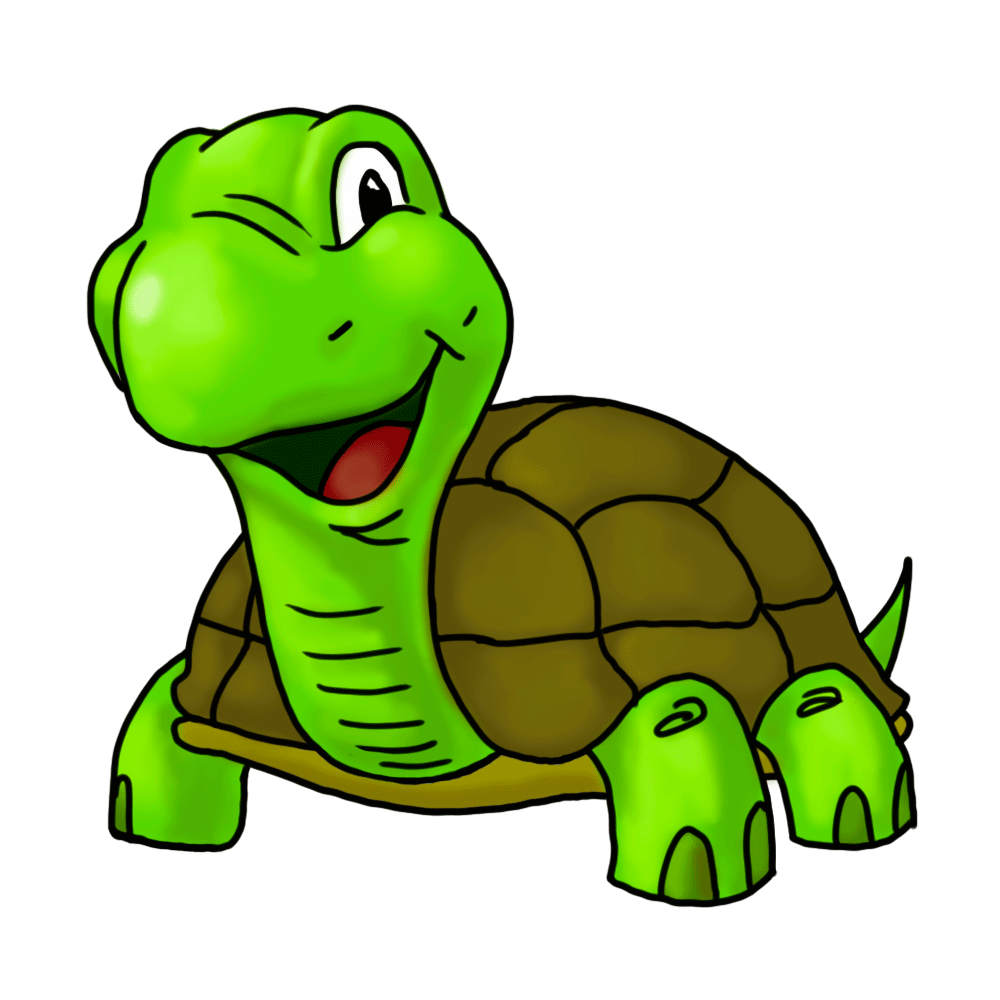 50 Clipart Turtles Clipartlook