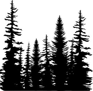 *Impression Obsession Cling Stamp PINE T-*Impression Obsession Cling Stamp PINE TREES CC101-11