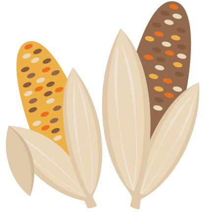 Indian Corn Fall SVG scrapboo - Indian Corn Clipart