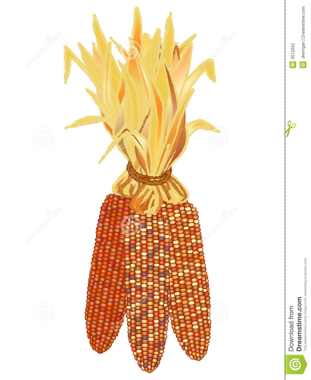 Indian Corn Stock Photography - Indian Corn Clipart