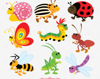 insect clipart-insect clipart-1