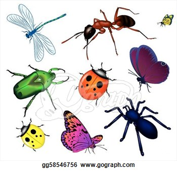 Insects clip art - ClipartFes - Insects Clipart
