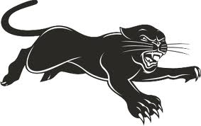 Interesting Information On Black Panthers