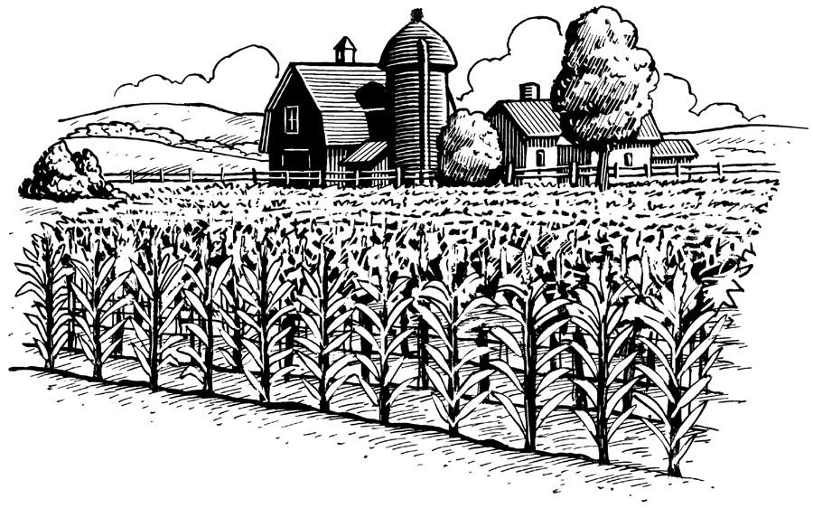 Iowa Farm Clipart #1