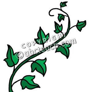 Ivy Clipart - Aka Clipart