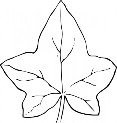 Ivy Leaf Clip Art Free Vector In Open Office Drawing Svg Svg