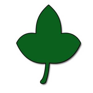 Ivy Leaf Clipart