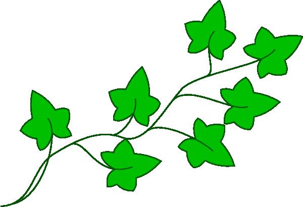 Ivy Vine Clip Art At Clker Com Vector Clip Art Online Royalty Free