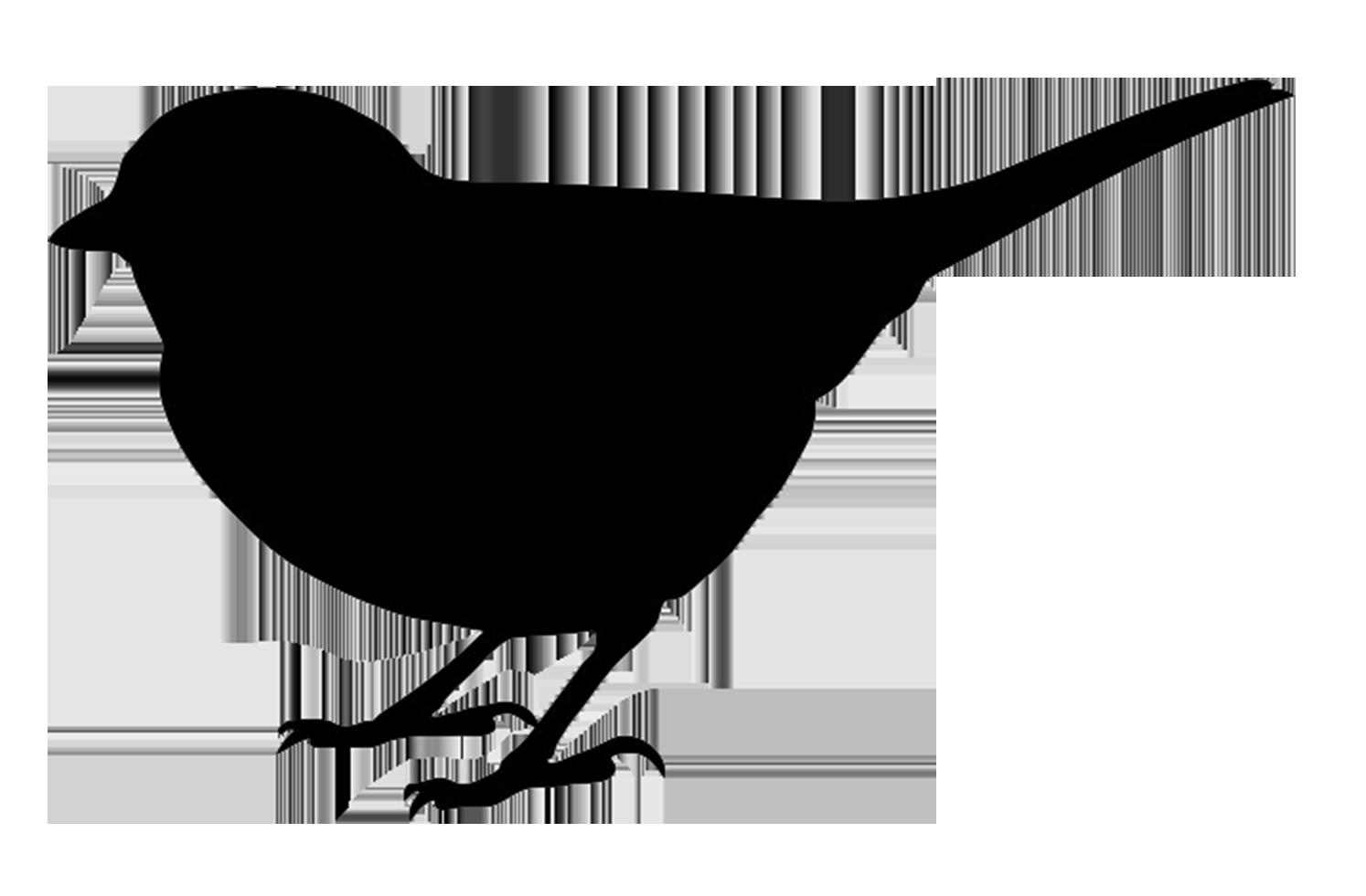 Bird silhouette clipart - Cli