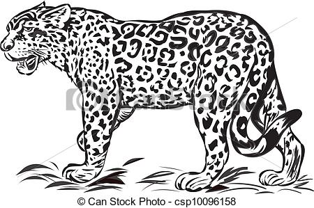 . ClipartLook.com Wild jaguar,illustration with only one colour