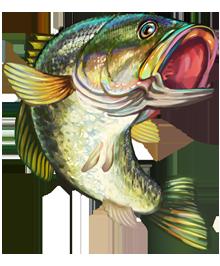 Bass Fish Clipa...