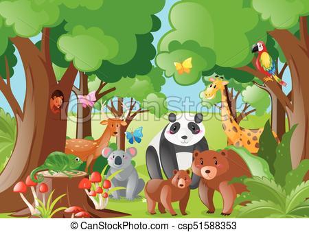 Wild animals in the jungle - csp51588353